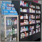 Farmácia Loja Fofinho