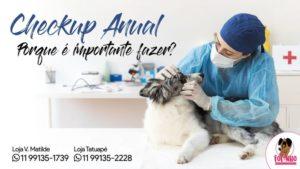 A importância do checkup anual para cães e gatos