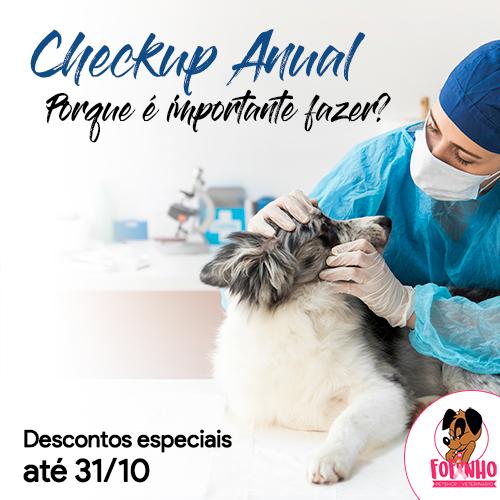 A importância do checkup anual para os cães e gatos