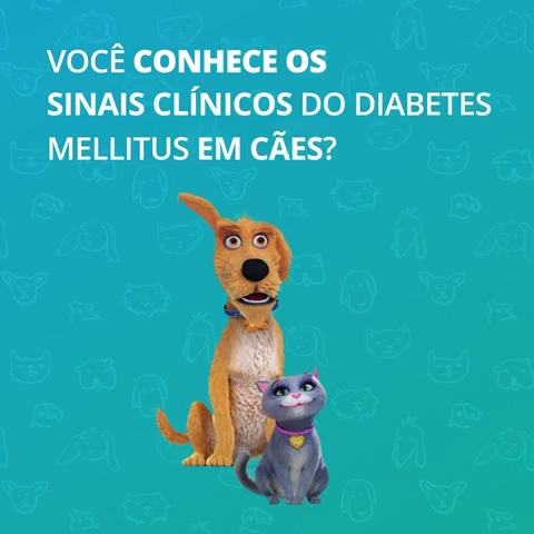 Diabetes Canina