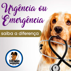 Urgência ou emergência. Você sabe a diferença?